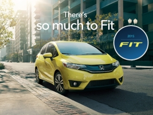 Fit 2015 USA