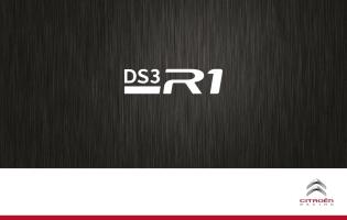 DS3 R1 06.2014 1
